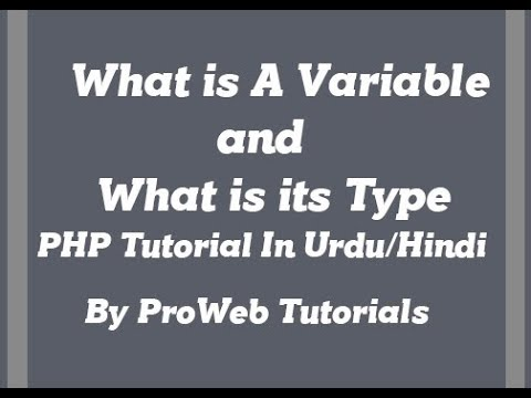 what is variable and what is data type