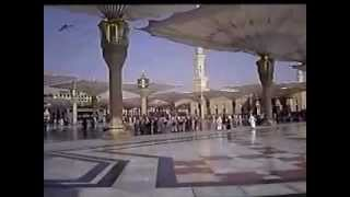 Hani Ar rifai Qura