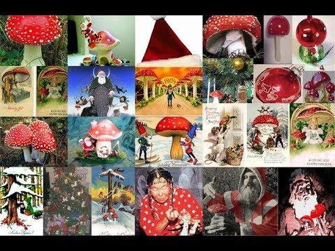 Santa Claus the Magic Mushroom