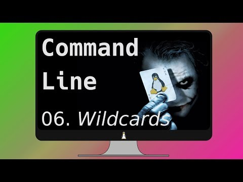 06. WILDCARDs in the Linux Terminal (not gaming!)