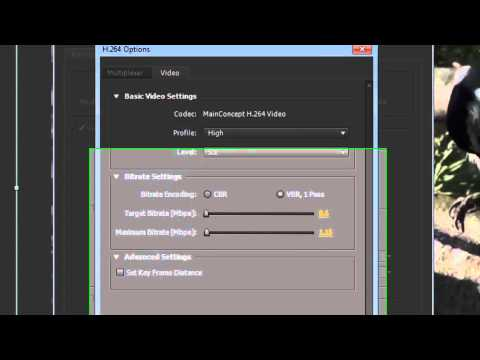 Adobe After Effects CS5/CS6 - Save(Export) Video [Tutorial]