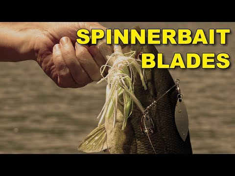 Spinnerbait Blade Types | Bass Fishing