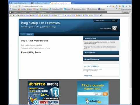Twitter Feed for Wordpress Plugin - Blog Setup For Dummies