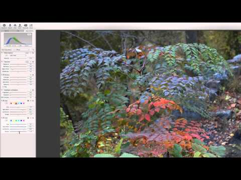 Extreme Color Control in Aperture