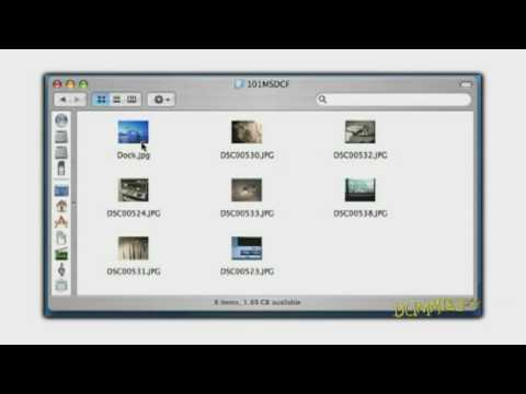 How to Transfer Photos from Your Digital Camera to Computer For Dummies