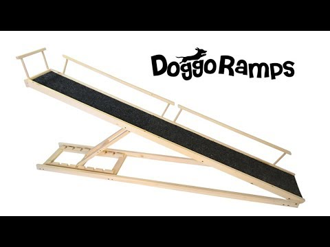 Doggo Ramps, A Bed Ramp for Your Pet + More Crowdfunding Success Stories