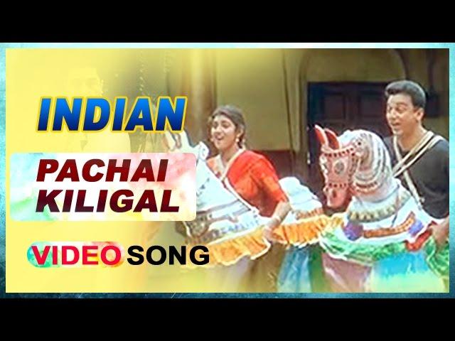 Download Pachai Kiligal Video Song   Indian Tamil Movie   Kamal Haasan   Sukanya   AR Rahman   Music Master MP3 Gratis