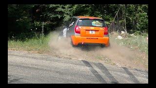 Rallye de la Drome Paul Friedman 2019 - Crashs and Mistakes -