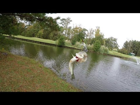 PULLING BASS IN BY HAND