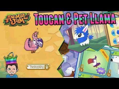 Animal Jam: LET'S GET A TOUCAN & PET LLAMA!