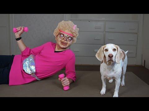 Xxx Mp4 Dogs Prank Nerd Girl Funny Dogs Maymo Amp Potpie 3gp Sex