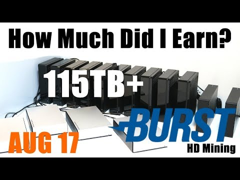 How Much Did I Earn In August? 115TB+ Burstcoin HardDrive Mining Rig