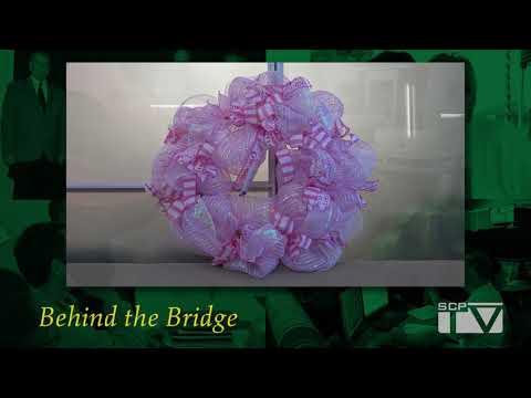 Behind the Bridge: Paint the Parish Pink 2017