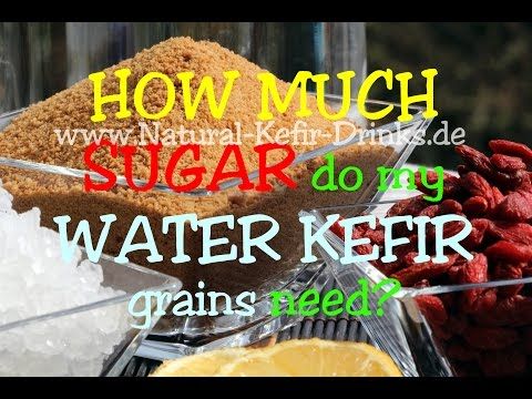 80g sugar per litre in the water kefir batch - isn't that too much?
