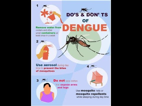 Dengue Fever Home Remedies  Recovery (bangla)