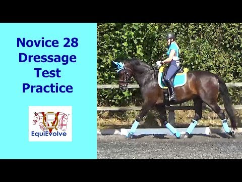 Novice 28 Dressage Test Learning Tool