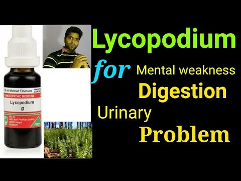 Homeopathy remedy Lycopodium for weak memory, weak digestion, urinary problem, indigestion, constipa