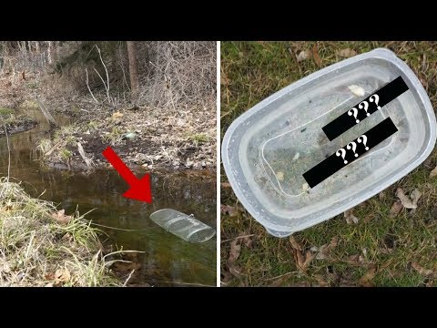 SUPER Clear Water Creek MINNOW TRAP! ~ Finding Out What Fish are in my Creek