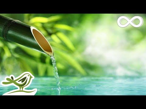Relaxing Piano Music: Water Sounds, Relaxing Music, Sleep Music, Peaceful Music ★143