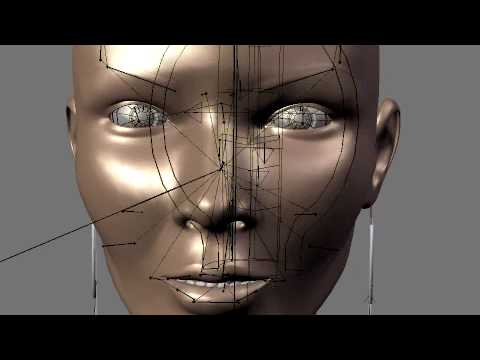 Blender Female Face Structure Display