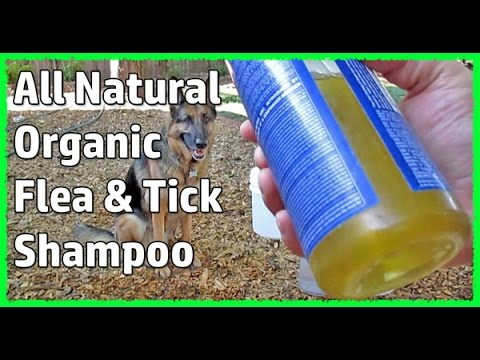 Natural Organic Dog Shampoo / Conditioner Plus Flea And Tick Control