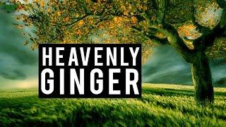 HEAVENLY GINGER