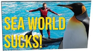 SeaWorld Unveils New Shamu Show & People Hate It! ft. DavidSoComedy