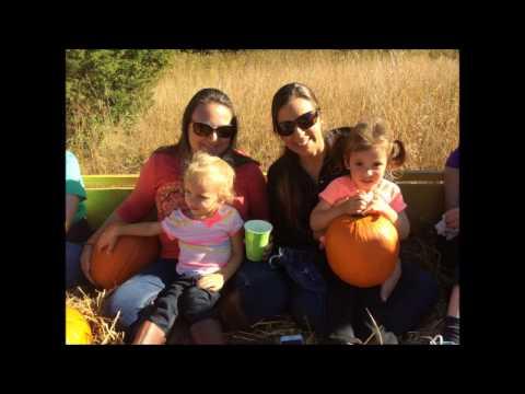 Fall Festival on Laid Back Farm