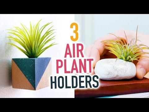 3 DIY Air Plant Holders ~ Cute Room Decorations! - HGTV Handmade
