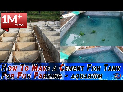 How To Make a Cement Fish Tank For Fish Farming
