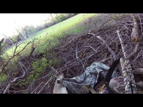 Western Oklahoma Turkey hunt
