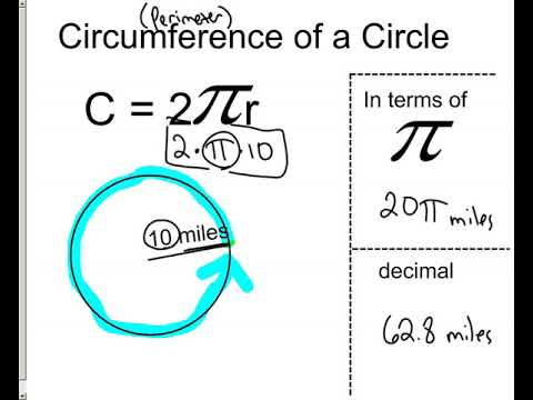 Circumference of circles