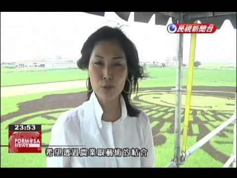 Yunlin's Cihtong Township turns rice paddy into a large artwork