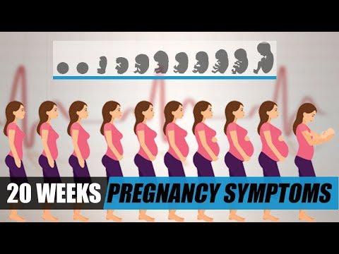 20 Weeks Pregnant Symptoms - Pregnancy Week by Week