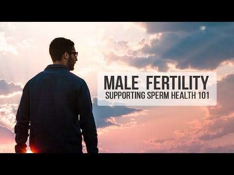 Male Fertility - Supporting Sperm Health 101