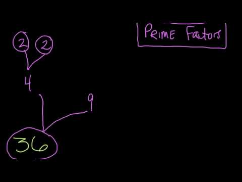 Prime Factorization of 36 #24
