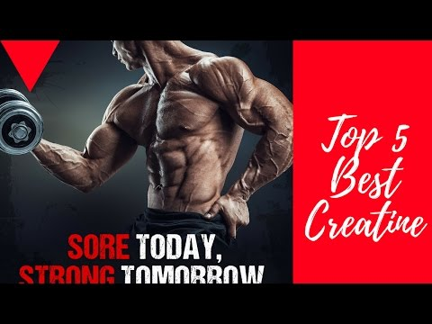 Top 5 Creatine Supplements of 2017 | Best Creatine Powder for Muscle Gain