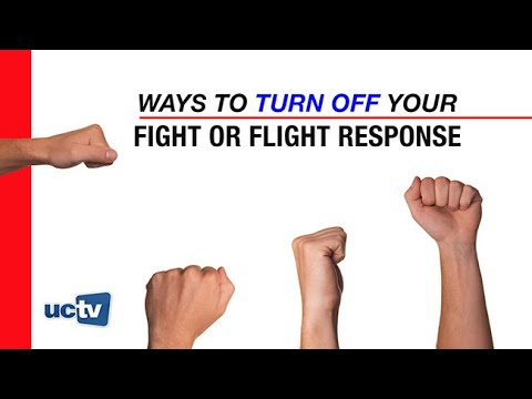 Ways to Turn Off Your Fight or Flight Response
