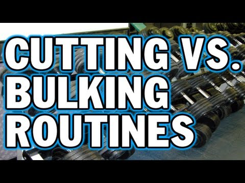 Cutting vs. Bulking Routines - What's the Difference?