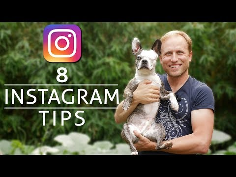 8 Instagram Tips for Photographers - More Followers, More Success