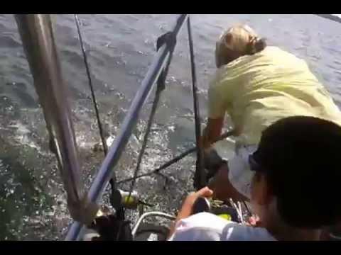 Calaveras lake texas redfish, catfish & talapia 4