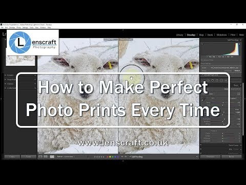 How to Make Perfect Photo Prints Every Time