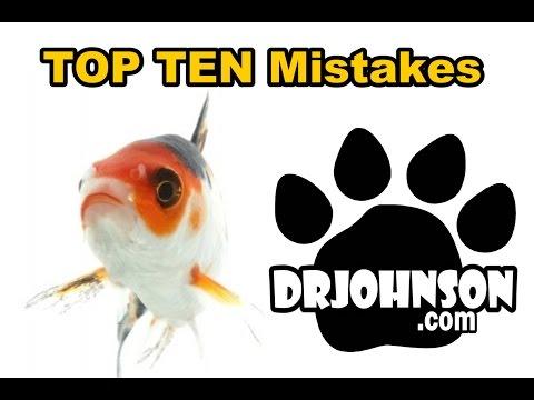Top Ten Koi & Pond Fish Keeping Mistakes