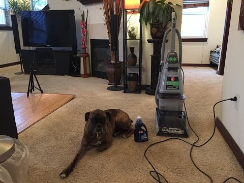 Hoover SteamVac Carpet Cleaner with Clean Surge Review