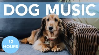 RELAXING ASMR FOR DOGS! Soothing Songs to Help Your Dog Sleep!