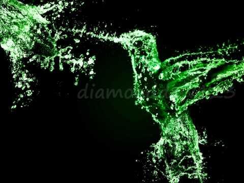 Water Splash bird - Photoshop cs3