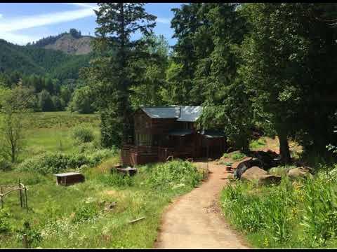 Boy Tells Parents About Bigfoot On Their Property Near Yacolt, Washington…