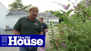 How To Plant A Butterfly Garden This Old House