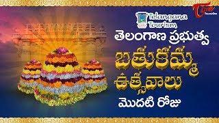 Bathukamma Sambaralu 2017 | Telangana Govt Bathukamma 1st Day Celebrations | Telangana Floral Festi