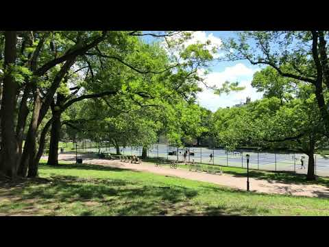 glorious Fort Greene Park, Brooklyn, New York (5-23-18)